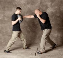 Krav Maga Technique - straight punch